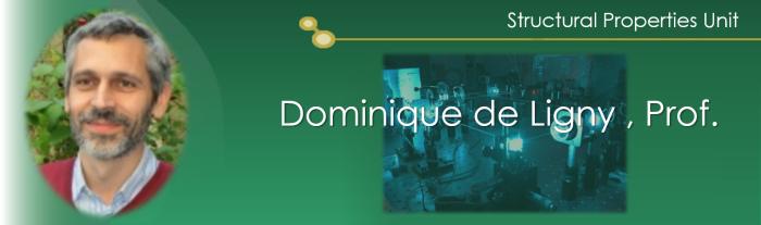 バナーDominique de Ligny_1